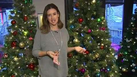 Cityline Gives Back 2015: Janice Meredith donates Christmas trees