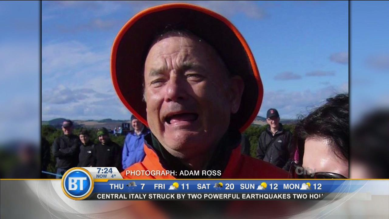 Can you tell who this is? Tom Hanks or Bill Murray?